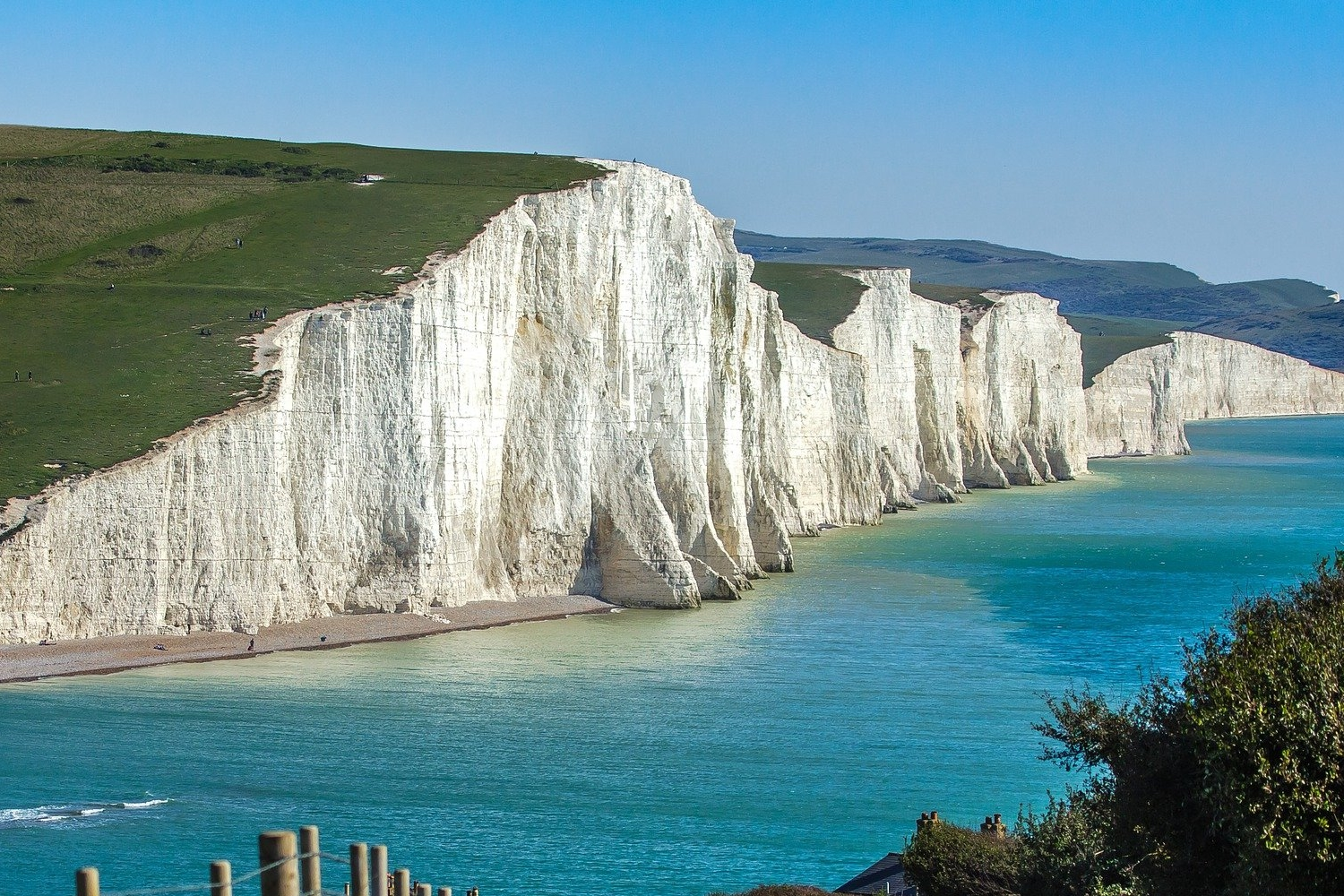 South Downs Tours